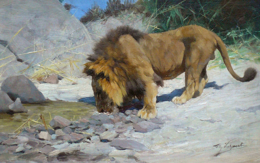 """Lion at the watering place"" Oil on canvas, 19 x 32 cm signed"